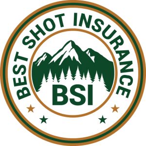 Best Shot Insurance Logo