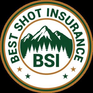 Best Shot Insurance Logo